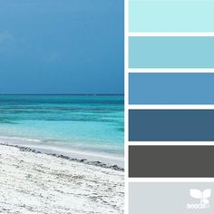 today's inspiration image for { color sea } is by @arasacud ... thank you, Sara, for another incredible #SeedsColor image share!