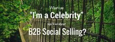 What can I'm a Celebrity teach us about B2B social selling? Quite a bit, apparently. Find out how to create relationships and win business.