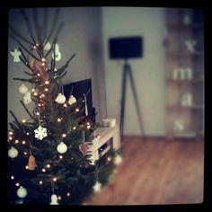 Rond Kerst brengen wij ons huis in de kerstsfeer. Er komt een kerstboom versierd  met ballen, ornamenten, slingers, lichtjes en bovenop een piek. Verder veel kaarsen, dennentakken en kerstornamenten. Een heerlijke tijd!