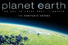 Planet Earth is returning to TV later this year, and this time, it'll be in 4K. The original 11-part series debuted in 2006 and was the first BBC nature documentary to be filmed in high definition. It helped propel HDTV's popularity, and this new season will take those stunning nature shots a step fu