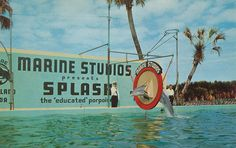 Marineland, Florida by The Pie Shops Collection, via Flickr