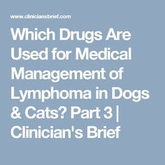 Which Drugs Are Used for Medical Management of Lymphoma in Dogs & Cats? Part 3 Lymphoma In Dogs, Being Used, Drugs, The Cure, Dog Cat, Management, Articles, Medical, Cats