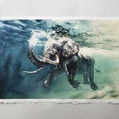 Watercolorist: @marcosbeccari #waterblog #акварель #aquarelle #drawing #art #artist #artwork #painting #illustration #watercolor #aquarela