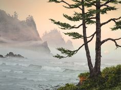 Original watercolors, oils lithographs, giclee of the Oregon Coast, Jeffrey Hull Gallery Cannon Beach, Oregon. Art Aquarelle, Watercolor Drawing, Watercolor Landscape, Painting & Drawing, Watercolor Paintings, Original Paintings, Watercolours, Landscape Drawings, Landscape Paintings