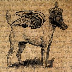 Jack Russell with wings