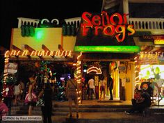 Playa Del Carmen Nightlife | Nightlife Night Clubs Dance Clubs Bars Discoteques in Playa del Carmen ...