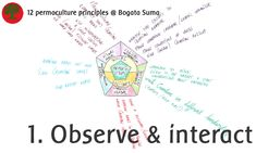 Permaculture principles 1. Observe and interact  Observe learning styles and interact by finding creative solutions for better learning.