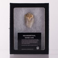 Neanderthal Hand Axe Fragment