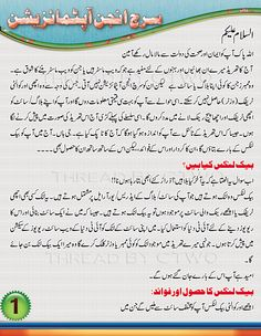 Search Engine Optimization(Seo) Class-1 in Urdu & Hindi | King Learner