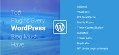 NCode Technologies India is the best WordPress plugin development company. Ask us for WP plugins for your blog.