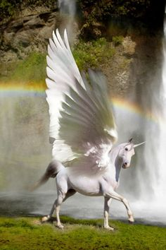 Hope there are unicorns in heaven.  He shall be mine.   (Pegasus)