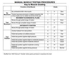 Muscle Testing Grading Chart, adapted from the book by Florence P. Kendall called Muscles, Testing and Function Manual Muscle Testing Grading Chart, adapted from the book by Florence P. Kendall called Muscles, Testing and Function Occupational Therapy Assistant, Occupational Therapy Activities, Physical Therapy Student, Physical Therapist, Nbcot Exam Prep, Physique, Acute Care, Anatomy And Physiology, Pediatrics