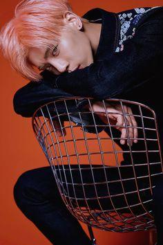 Kim Jong Hyun 김종현    SHINee member of eternity!    * 1990 April 8, † 2017 December 18