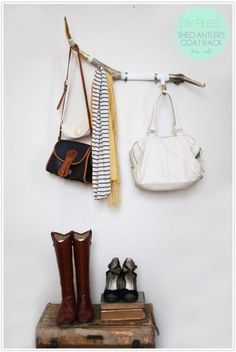 Create a coat rack using antler