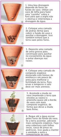 Plantas/Jardim ways to style short natural hair - Natural Hair Styles Succulents Garden, Garden Plants, Indoor Plants, House Plants, Planting Flowers, Container Gardening, Gardening Tips, Urban Gardening, Minis