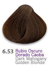 6.53 Dark Mahogany Golden Blondek
