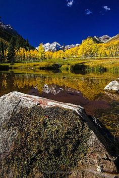 Maroon Bells, yellow aspens and blue sky, Colorado