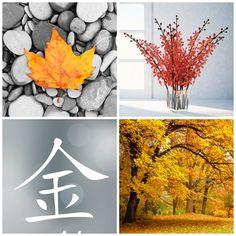 Høstens energi - Purodeco Feng Shui konsulent Oslo Akershus Norge #fengshui #fall #autumn #årstid #høst