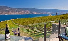 UK review of Osoyoos & wine country http://www.dailymail.co.uk/travel/article-2093962/Okanagan-wine-holidays-The-gourmet-British-Columbia.html