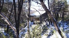 Tiny-Chilean-Cabin-in-the-Woods-10