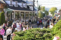 Baie-Saint-Paul: bâtir la «plus belle rue du Québec» | Charles-Éric Blais-Poulin | Charlevoix Montreal Quebec, Quebec City, Baie St Paul, Charlevoix, Destinations, Canada, Saint Jean, Local Artists, Rue