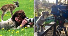 21+ Animals that Want to be Photographers - cute and cuddly, animal photography, silly photographer, baby animals