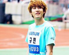 Super Junior Kyuhyun | dork