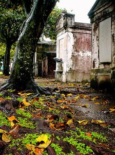 "Lafayette Cemetery, New Orleans. *Been to New Orleans, but none of the ""haunted"", plan to go back one day!"