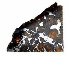 Seymchan Pallasite Cut and Polished Meteorite 11 gram Specimen - found in 1967