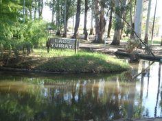 Parque Liquidambar.-