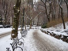 "Central Park in New York City - Winter 2009"" by Wayne George ..."