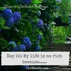 Dare to Declare 30 day Challenge Day 22: My life is so rich because.... It's a 30 day challenge to declare what we love & enjoy about ourselves, our lives and the world. Complete the phrase in the comments below - so we can celebrate together.