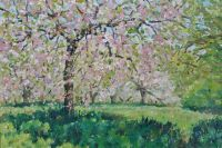 Apple Blossom In May by F. Russell