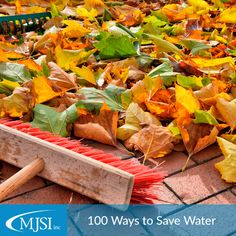 Tip: Use a broom instead of a hose to clean leaves from your driveway or sidewalk this fall. #100WaysToSaveWater