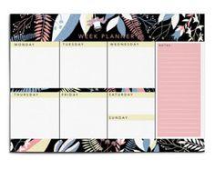 Sale 2017 Calendars Set of 2 Papio Press Wall by PapioPress
