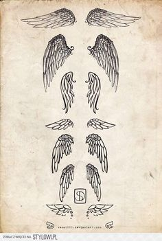 Wings. Any of these I would get between or on my shoulder blades. Always wanted wings