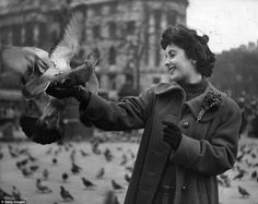 A love affair with London: Elizabeth Taylor entertains the pigeons in Trafalgar Square, 1948 Marlene Dietrich, Brigitte Bardot, Pigeon, Mary Badham, Young Elizabeth Taylor, Chris Ware, Gregory Peck, Katharine Hepburn, Audrey Hepburn