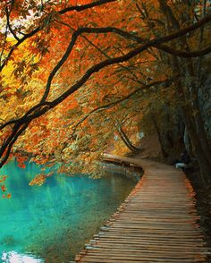 Plitvice Croatia / by Kenan Hurdeniz