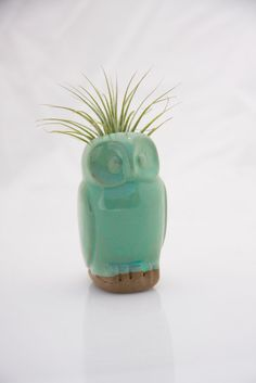 Owl air plant pod in mint. $18.00, via Etsy. @Kateri Quitugua