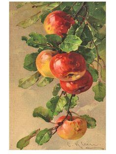 Lindas manzanas