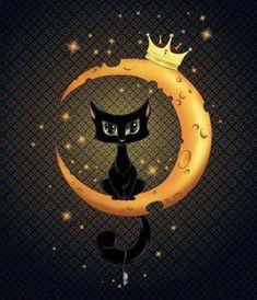 black cat~~~