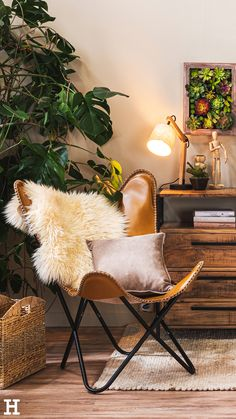 Shop the Look - Nature Living Nature Living, Shops, Butterfly Chair, Balinese, Anna, Furniture, Home Decor, Natural Materials, Armchair