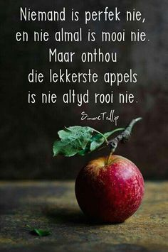 Die lekkerste appels is nie altyd rooi nie. Bible Quotes, Words Quotes, Qoutes, Sayings, Afrikaanse Quotes, Inspirational Quotes Pictures, Word Pictures, Strong Quotes, English Quotes