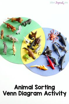 Animal sorting activity on a venn diagram. A hands-on way to learn about animal habitats and practice sorting.