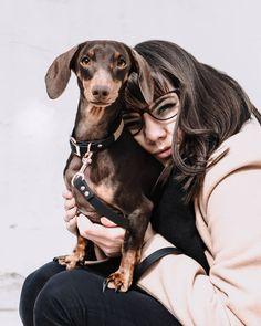 Ebben a világban nincs semmi igazabb, mint egy jó kutya szeretete.❤️🐾 Instagram Feed, Pitbulls, Hipster, Dogs, Animals, Style, Swag, Hipsters, Animales