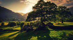 English Countryside Wallpaper Desktop - WallpaperSafari
