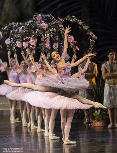 balet snd pyzhov - Hľadať Googlom Ballet Dance, Ballet Skirt, National Theatre, Dresses, Fashion, Vestidos, Moda, Tutu, Fashion Styles