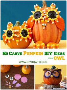 16 No Carve Halloween Pumpkin Decoration DIY Crafts [Picture Instructions] Halloween Banner, Holidays Halloween, Halloween Treats, Halloween Pumpkins, Halloween Fun, Halloween Decorations, Pumpkin Decorations, Owl Pumpkin, Unicorn Pumpkin