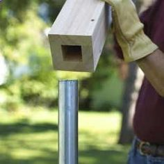 No-dig DIY replacement for chain link fence: cover the posts with a wooden sleeve and nail slats to the covers.
