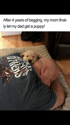 After 4 years of begging, my mom finally let my dad get a puppy! Animals And Pets, Funny Animals, Cute Animals, Farm Animals, Funny Dog Pictures, Cute Animal Pictures, Dog Memes, Funny Memes, Funniest Memes